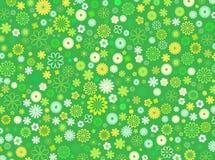 Frühlings-Blumen-Hintergrund Stockfotografie