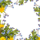 Frühlings-Blumen-Rand Stockbilder
