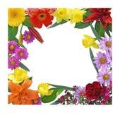Frühlings-Blumen-Rand Lizenzfreies Stockfoto