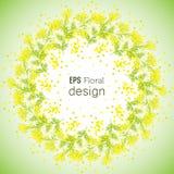 Frühlings-Blumenhintergrund mit Kranz der Mimose Stockfoto