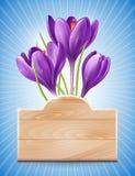 Frühlings-Entwurf mit Blumen Stockfoto