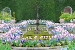 Frühlings-Garten Stockfotos