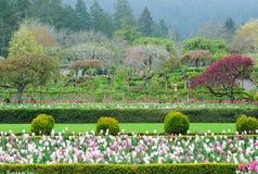 Frühlings-Garten Lizenzfreie Stockfotos