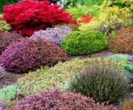 Frühlings-Garten stockfotografie