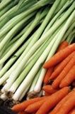 Frühlings-Gemüse Stockbild