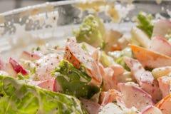 Frühlings-Gemüsesalat mit Majonäsenfokus auf Tomaten lizenzfreies stockfoto