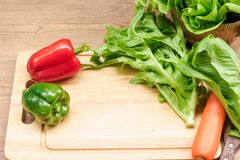 Frühlings-Gemüsesalate stockfotografie