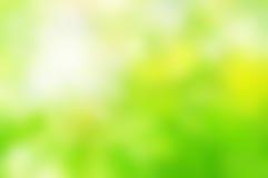 Frühlings-grüne Hintergrund-Unschärfe Lizenzfreies Stockbild