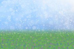 Frühlings-Hintergrund-blauer Himmel-Wiesen-Blumen lizenzfreie abbildung