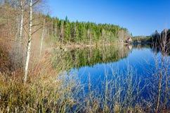 Frühlings-Landlandschaft des Schweden typische Stockfotografie