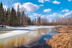 Frühlings-Landschaft Stockfotos