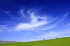 Frühlings-Landschaft Lizenzfreies Stockbild