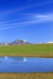 Frühlings-Landschaft Lizenzfreie Stockfotos