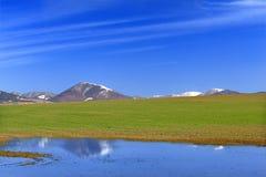 Frühlings-Landschaft Stockbilder