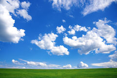 Frühlings-Landschaft - grünes Feld und blauer Himmel Stockbild