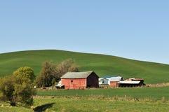 Frühlings-Landschaftszene in Colfax Lizenzfreies Stockfoto