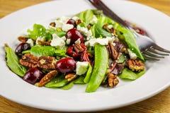 Frühlings-Mischungs-Salat lizenzfreie stockfotos