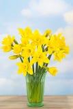 Frühlings-Narzissen lizenzfreies stockbild