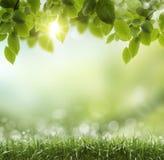 Frühlings- oder Sommerhitzezusammenfassung Lizenzfreie Stockfotos