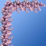 Frühlings-Rand Lizenzfreie Stockbilder