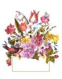 Frühlings-Retro- mit Blumenkarte in der Weinlese-Art Stockbild
