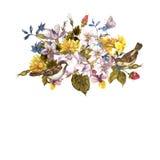 Frühlings-Retro- mit Blumenkarte mit Spatzen Stockbild