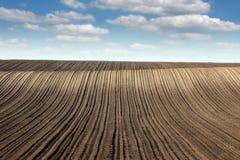 Frühlings-Saison des gepflogenen Feldes und des blauen Himmels Landschafts Lizenzfreie Stockfotografie