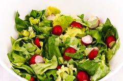 Frühlings-Salat Stockfoto