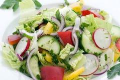 Frühlings-Salat Lizenzfreies Stockfoto