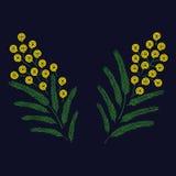 Frühlings-schöne stilisierte aufwändige blühende Mimosenniederlassung Photorealistic Ausschnittskizze lizenzfreie abbildung
