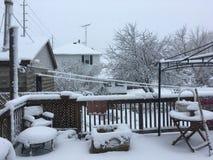 Frühlings-Schnee Stockfoto