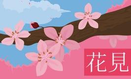 Frühlings-szenische Ansicht von Cherry Flowers in der Niederlassung in Hanami, Vektor-Illustration vektor abbildung
