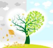 Frühlings- und Herbstbaum Lizenzfreies Stockfoto