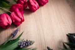 Frühlings- und Ostern-Feiertagshintergrund mit Tulpen stockfoto