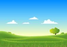 Frühlings-und Sommer-Natur-Landschaft Lizenzfreies Stockbild
