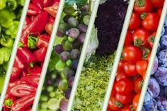 Frühlings- und Sommergemüse, Fruchthintergrund Lizenzfreies Stockfoto