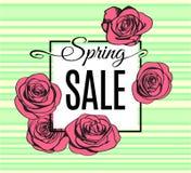 Frühlings-Verkaufsfahnenschablone mit rosa Entwurfsrosen auf Grün streifte Hintergrund ab Vektor Lizenzfreie Abbildung