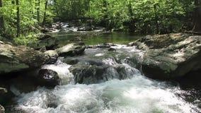 Frühlings-Wasserfälle am Freund-Nebenfluss im Mai stock footage