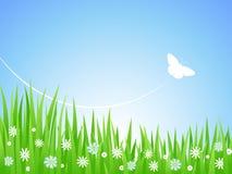 Frühlings-Wiese. Lizenzfreies Stockbild
