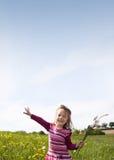 Frühlings-Wiese #31 Lizenzfreie Stockbilder