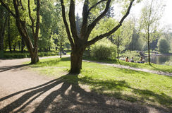 Frühlings-Zeit im Park lizenzfreies stockfoto