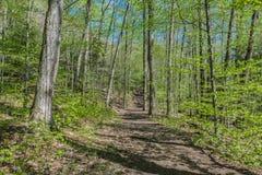 Frühlings-Zeit-Wanderung im Adirondacks Lizenzfreie Stockfotos