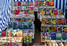 Frühlingsanlagen werden auf dem Markt verkauft Stockbilder
