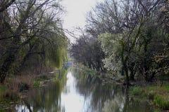 Frühlingsansicht des Kanals Stockfotografie