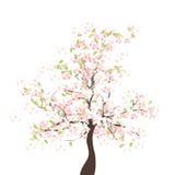 FrühlingsApfelbaum vektor abbildung