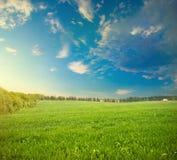 Frühlingsbauernhoffeldansicht Stockfotos