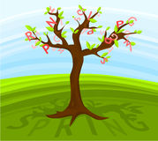 Frühlingsbaum Stockbild