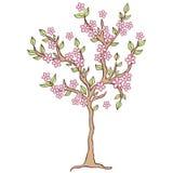 Frühlingsbaum auf weißem Hintergrund Stockfotos