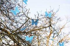 Frühlingsbaum und bunte künstliche blaue Schmetterlinge Lizenzfreies Stockbild