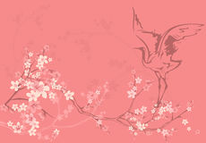 Frühlingsblüte Lizenzfreies Stockbild